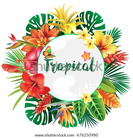 banner from tropical and flowers