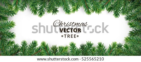 Banner with vector christmas tree branches and space for text. Realistic fir-tree border, frame isolated on white. Great for christmas cards, banners, flyers, party posters, headers. #525565210