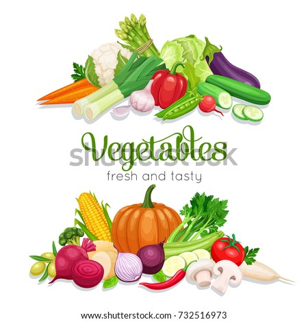 Banner with vector vegetables. Concept healthy food. Onion, zucchini, eggplant and asparagus. Corn, celery, mushrooms or daikon et al. #732516973