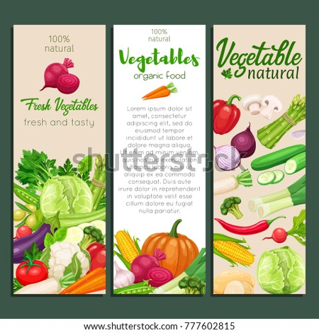 Banners design with vector vegetables. Concept healthy food. Cabbage or pepper, beets and carrots. Onion, zucchini, eggplant and asparagus. Corn, celery and mushrooms.