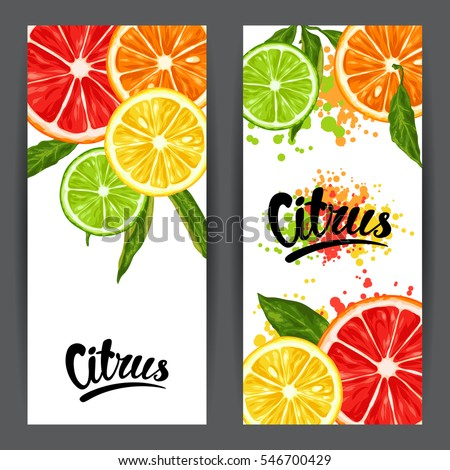 Banners with citrus fruits slices. Mix of lemon lime grapefruit and orange.