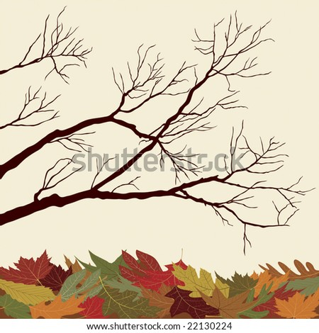 Bare Branches with Fallen Leaves