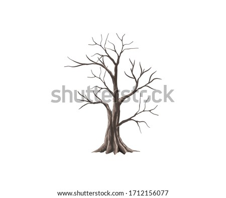 bare tree vector  dry tree and