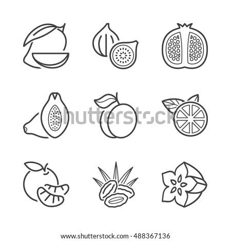 basic fruits thin line icons set. isolated. black color