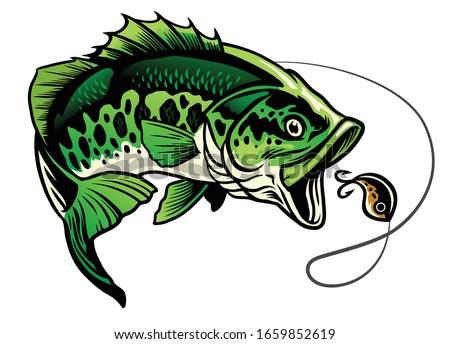 bass fish catching the fishing lure Foto d'archivio ©