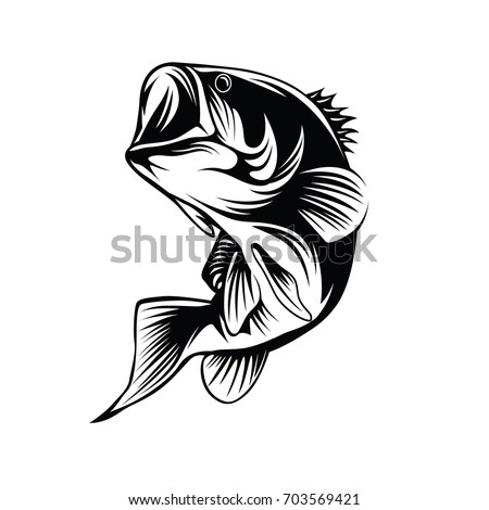 Bass fish Logo Vector
