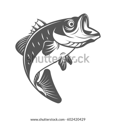 Bass fish vector illustration in monochrome vintage style. Design element for logo, label, emblem.