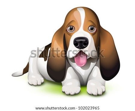Basset Hound puppy sticking his tongue out - stock vector