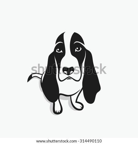 Basset hound - vector illustration