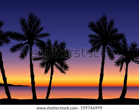 beach and palm tree background