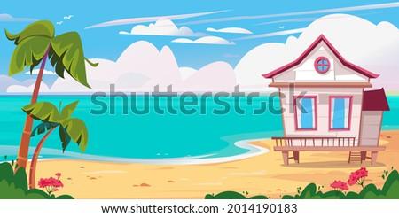 beach and sea  beach white