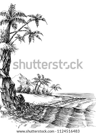 beach and sea view  palm trees