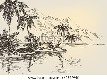 beach drawing  palm trees and