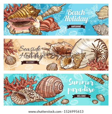 Beach holiday, marine shells and seaweeds, seaside holiday paradise. Seashell and mollusk, clam, snail, chiton and tusk shell. Scallop and pear whelk sea beach mollusk, corals and cockle, turret shell