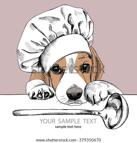 Beagle portrait in a hat of chef with ladle on beige background. Vector illustration.