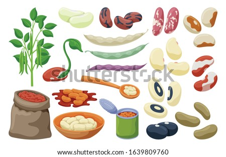 Bean of food vector illustration on white background .Isolated cartoon set icon soybean.Vector cartoon set icon bean of food. Stock photo ©