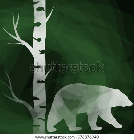 bear and birch tree