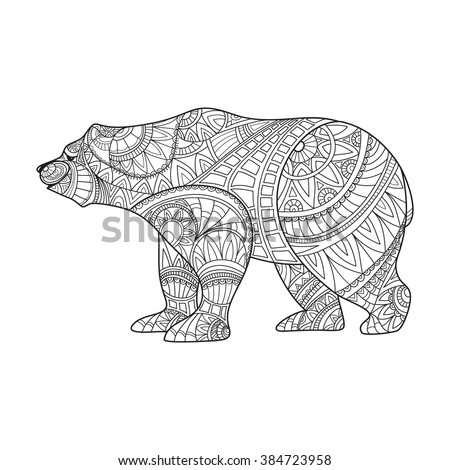 bear  animal hand drawn bear
