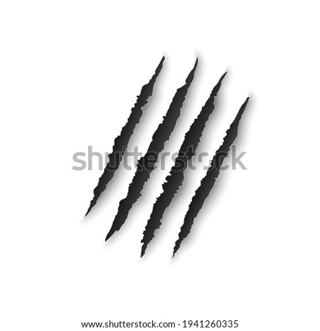 Bear claw marks, scratches, wild animal talon rips, predator nails vector trail. Tiger or cat paws sherds, realistic 3d marks of lion, monster, dragon or beast, break traces on white paper background Photo stock ©