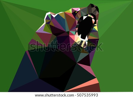 bear illustration illustration