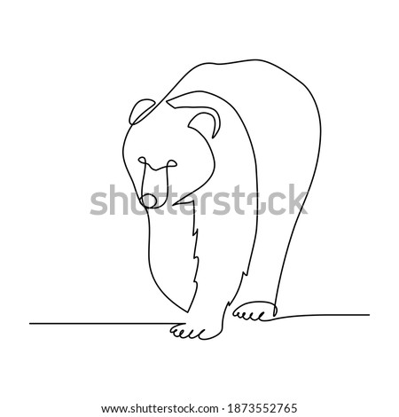 bear in continuous line art