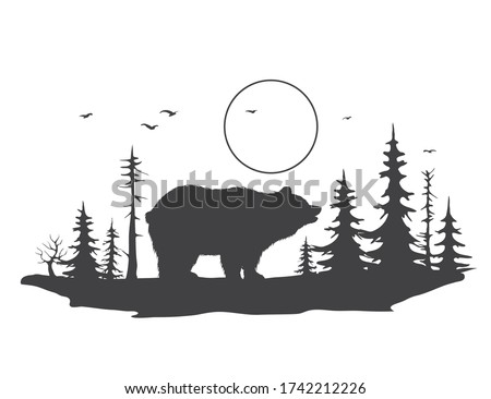 bear on the background of a