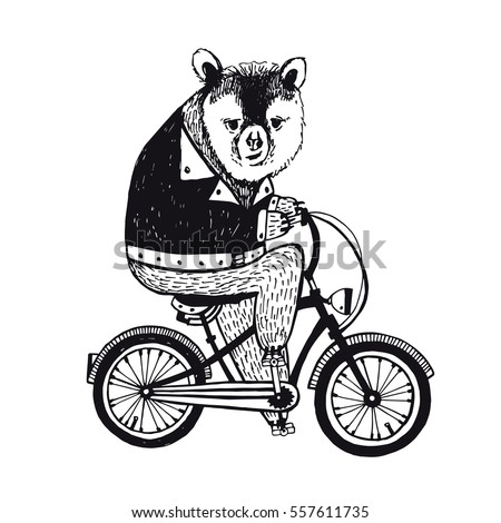 Bear on the bicycle. Vintage Illustration on white background.