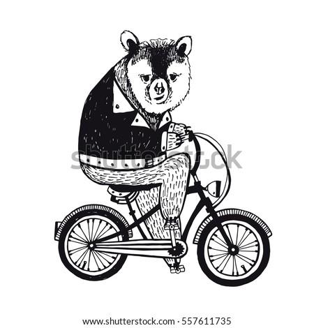 Bear on the bicycle. Vintage Illustration on white background.