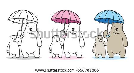 bear polar bear cub rain