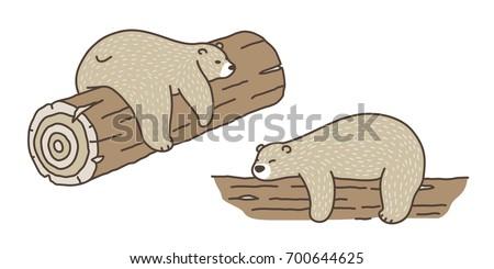 bear polar bear sleep on the