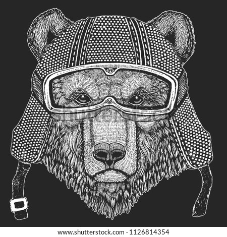 Stock Photo Bear. Vintage motorcycle hemlet. Retro style illustration with animal biker for children, kids clothing, t-shirts. Fashion print with cool character. Speed and freedom.