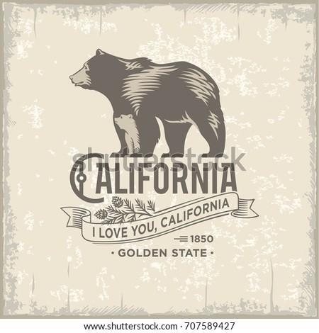 bear with bear  california