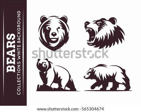 bears collections   vector