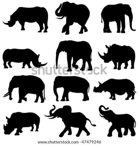 Beast duel: Elephants and rhinos