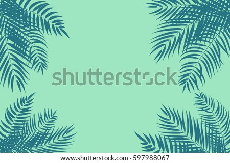 beautifil palm tree leaf