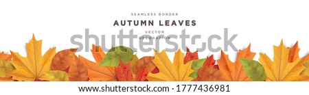 Beautiful autumn leaves decorative border frame vector template