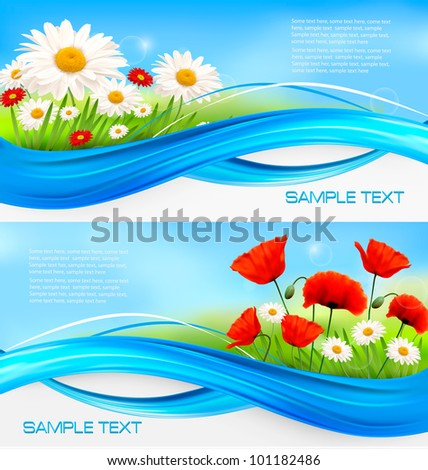 Beautiful banners with daisies and poppies. Vector.