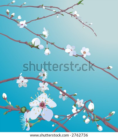 Beautiful blossom flowers Beautiful blossom flowers on a tree. No meshes used.
