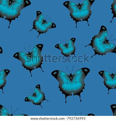 beautiful blue butterflies on a