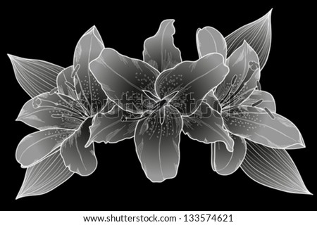 beautiful bouquet of lilies. Black, white and gray. Many similarities to the author's profile