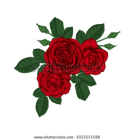 Stock Photo beautiful bouquet with red roses and leaves. Floral arrangement. design greeting card and invitation of the wedding, birthday, Valentine s Day, mother s day and other holiday.