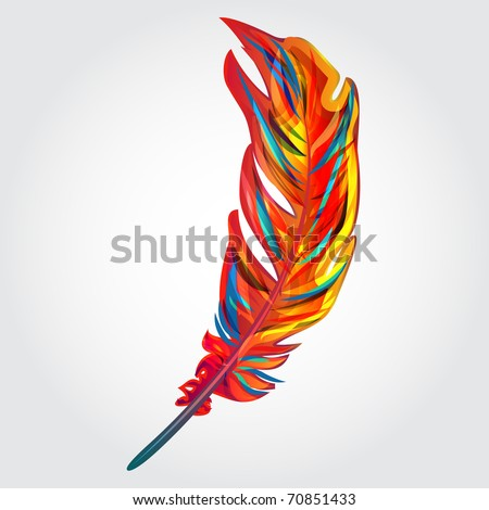 beautiful bright vector feather