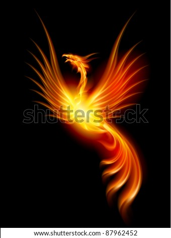 Beautiful Burning Phoenix. Illustration isolated over black background