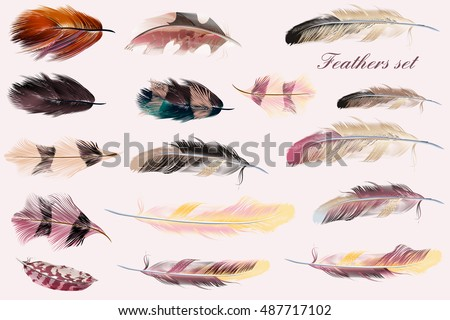 Beautiful collection of vector feathers in pink soft colors. Fashion illustration