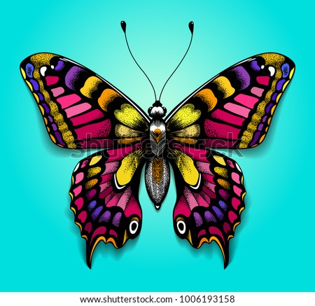 3b83aedebb14c Beautiful colorful butterfly on blue background. Bright tattoo for your  back. Tropical realistic butterfly