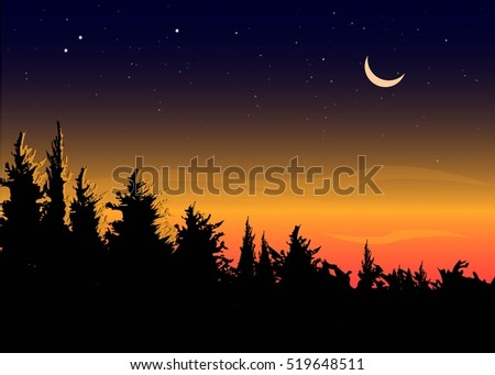 beautiful dawn on a forest with