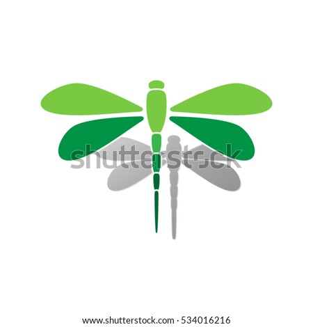beautiful dragonfly vector