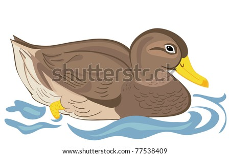 Swimming Duck - Download Free Vector Art, Stock Graphics & Images
