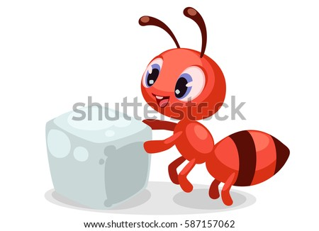 beautiful expressions on ant