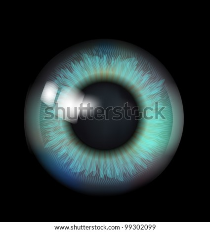 beautiful eyeball